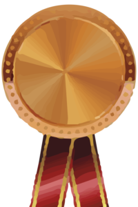 diseño web bronce
